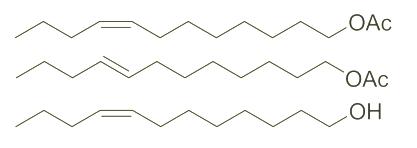 Structure of Z-8-Dodecenyl acetateE-8-Dodecenyl acetateZ-8-Dodecenol CAS WPNA-0001