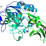 Structure of Recombinant Kex2 Protease EC 3.4.21.61 CAS UENA-0188