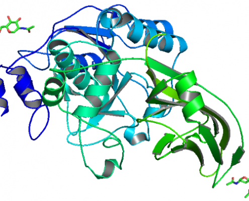 Structure of Recombinant Kex2 Protease EC 3.4.21.61 CAS UENA-0188