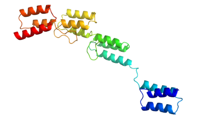 Structure of Recombinant Protein A CAS 91932-65-9