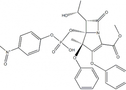 Structure of Recombinant Proteinase K EC 3.4.21.14 CAS 39450-01-6