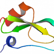 Structure of Recombinant Soybean Trypsin Inhibitor CAS 9035-81-8