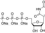 Structure of Uridine-5'-triphosphate Sodium Salt CAS 1175-34-4